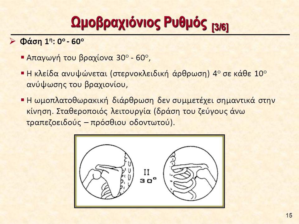 Ωμοβραχιόνιος Ρυθμός [4/6]